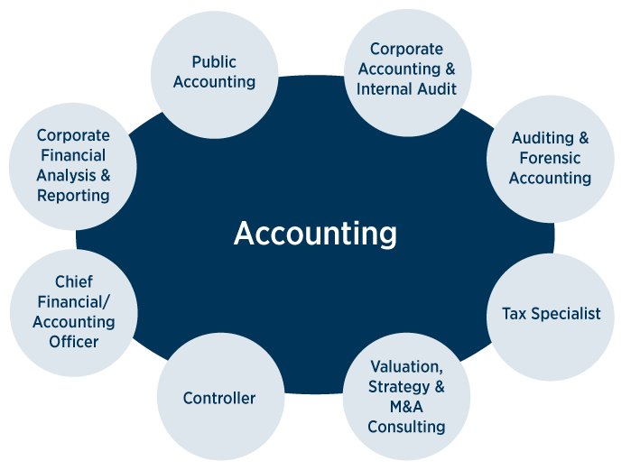 what can I do with a accounting degree?